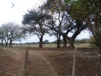 NEX-47762 - Terreno en Venta en Dos Lomas, CP 91697, Veracruz de Ignacio de la Llave.