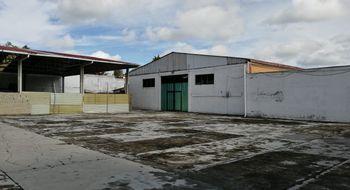 NEX-15833 - Bodega en Renta en Santiago Tlaxomulco Centro, CP 50280, México, con 667 m2 de construcción.