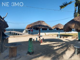 NEX-46916 - Terreno en Venta en Dzilam González, CP 97600, Yucatán.