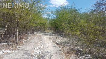 NEX-47332 - Terreno en Venta en Dzilam González, CP 97600, Yucatán.