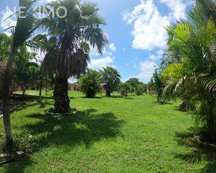 NEX-54427 - Terreno en Venta en Timul, CP 97436, Yucatán.
