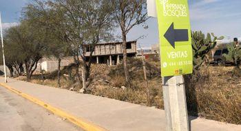 NEX-28561 - Terreno en Renta en Olinda, CP 78421, San Luis Potosí.