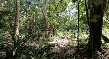NEX-16294 - Terreno en Venta en Kanxoc, CP 97785, Yucatán, con 15300000 m2 de construcción.