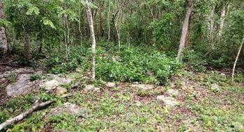NEX-16650 - Terreno en Venta en Yalcoba, CP 97794, Yucatán.