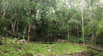 NEX-16660 - Terreno en Venta en Yalcoba, CP 97794, Yucatán.