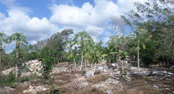 NEX-3640 - Terreno en Venta en Cholul, CP 97305, Yucatán, con 1 recamara, con 1 baño.