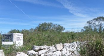 NEX-4561 - Terreno en Venta en San Ignacio, CP 97334, Yucatán.