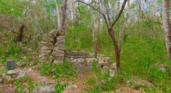 NEX-7629 - Terreno en Venta en Yalcoba, CP 97794, Yucatán.