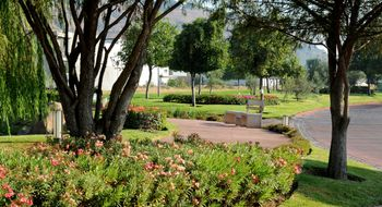 NEX-8572 - Departamento en Venta en San Pedro Garza Garcia Centro, CP 66200, Nuevo León, con 3 recamaras, con 3 baños, con 355 m2 de construcción.