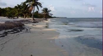 NEX-1722 - Terreno en Venta en Xcalak, CP 77970, Quintana Roo.
