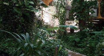 NEX-11900 - Departamento en Renta en Luis Donaldo Colosio, CP 77728, Quintana Roo, con 1 recamara, con 1 baño, con 220 m2 de construcción.