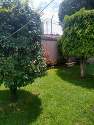 NEX-41619 - Departamento en Renta en El Rosedal, CP 04330, Ciudad de México, con 2 recamaras, con 2 baños, con 82 m2 de construcción.